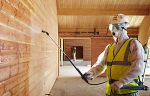 Антисептики и биозащита. Средства для защиты древесины на Стройсматом. Стройсматом - первый строительный интернет-рынок.